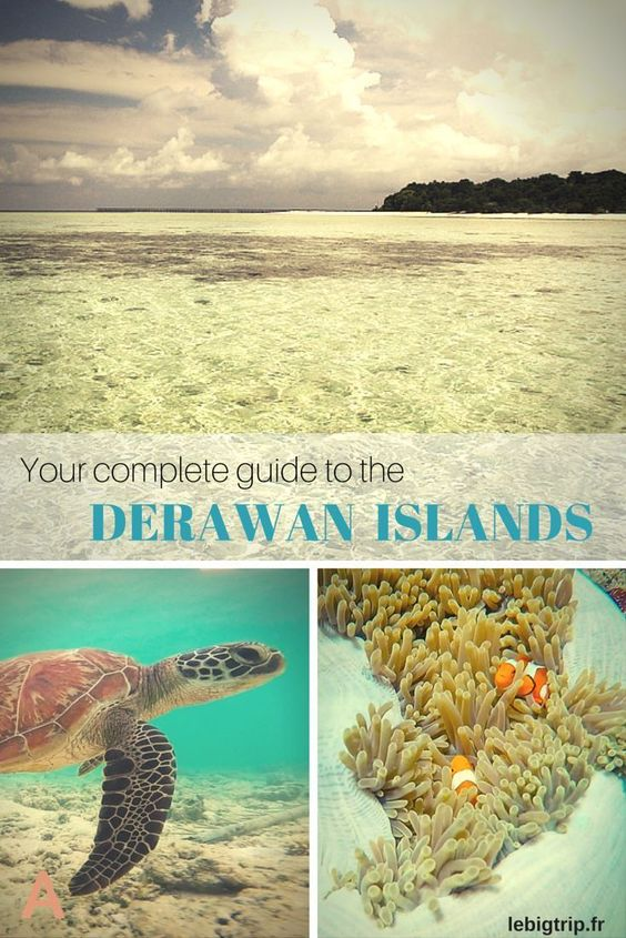 Some places are still secluded and not that known by tourists.  Here's a complete travel guide to help you plan your trip to the Derawan Islands, #Indonesia, #Borneo