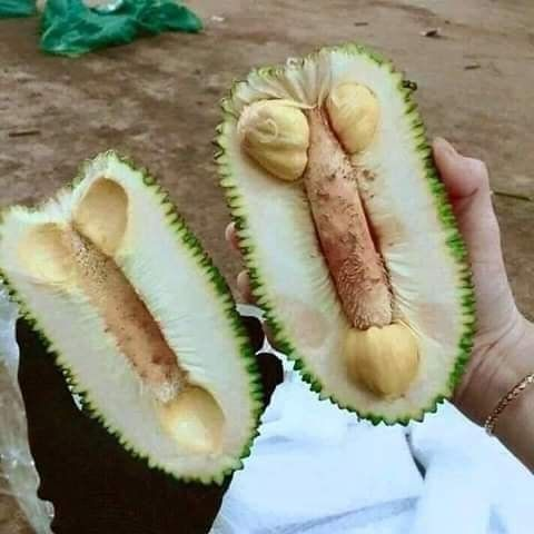 Pin By Mahmud Ur Reza On Funny Funny Posters Fruit My Sister