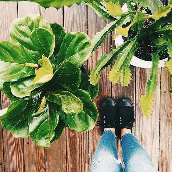 #liveBANGS by @emilywrecker