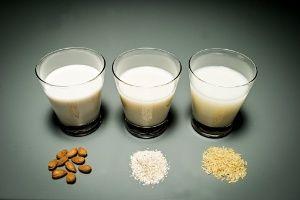 Mais leites vegetais - para deixar as vacas em paz!
