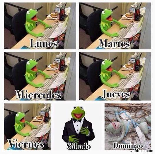 kermit spanish girl personals A list of every word of the year selection released by dictionarycom dictionarycom's first word of the year was chosen in 2010.
