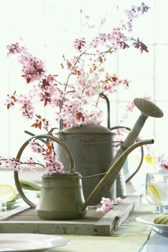 Spring Inspiration and decorating ideas! Pink flowering branches in vintage galvanized watering cans.