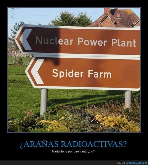 ¿ARAÑAS RADIOACTIVAS? - Nada tiene por qué ir mal ¿no?   Gracias a http://www.cuantarazon.com/   Si quieres leer la noticia completa visita: http://www.estoy-aburrido.com/aranas-radioactivas-nada-tiene-por-que-ir-mal-no/