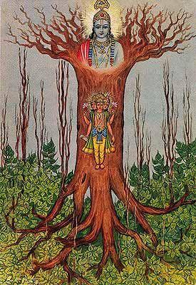 Resultado de imagen de El Ashvatha del Bhagavad Gita.