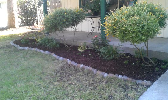 Used mulch and rock border I bought at Home Depot :)