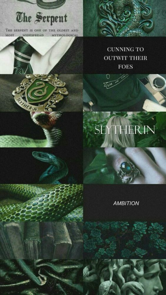 The inner slytherin in me