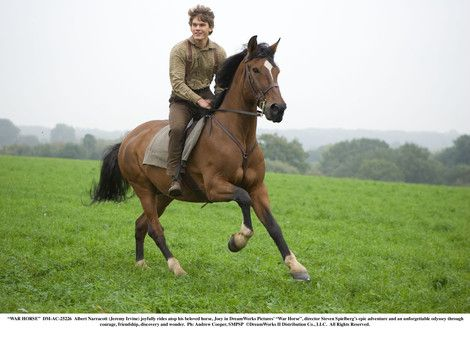 Was watching 'War Horse' yesterday. A really really good movie.