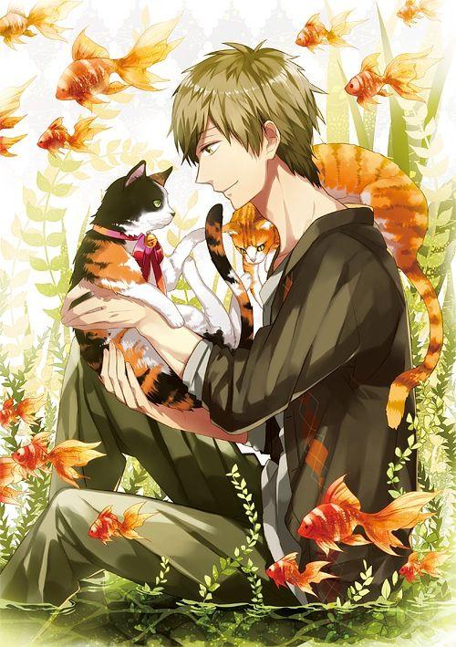 猫と橘真琴