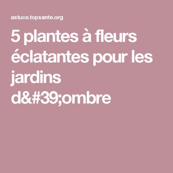 5 plantes à fleurs éclatantes pour les jardins d'ombre