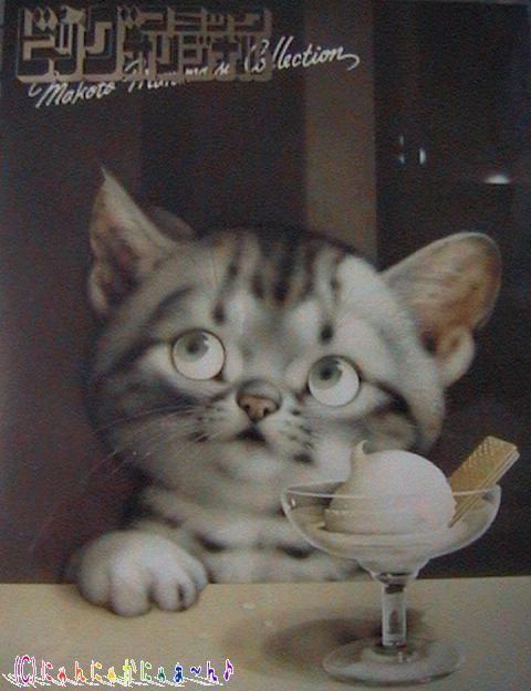 Narrow Cat Litter Box Diy Cat Scratching Post Mancoon Cat