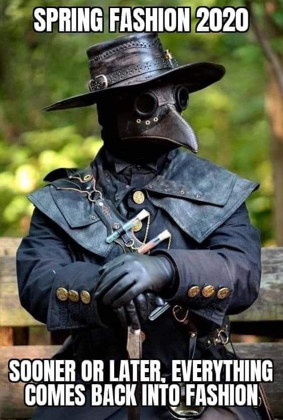 Pin By Heidi Ritz On Funny In 2020 With Images Plague Doctor