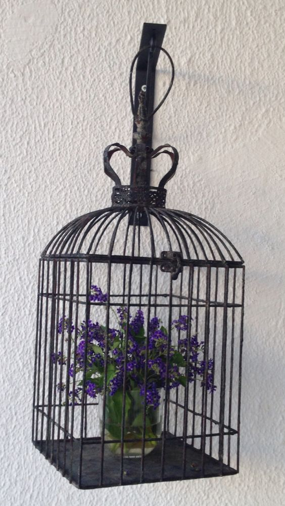 Cage & Flowers