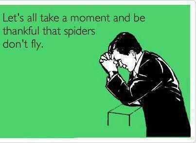 Afraid of spiders ;) (I think some do though lol or jump far!)