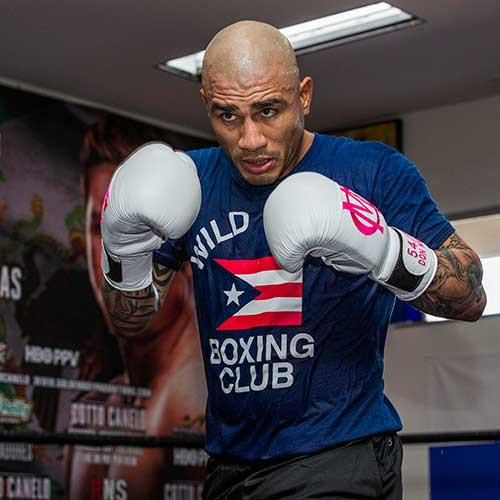 Wild Card Boxing Club Puerto Rico Tshirt Blue Boxing Club Miguel Cotto Boxing Workout