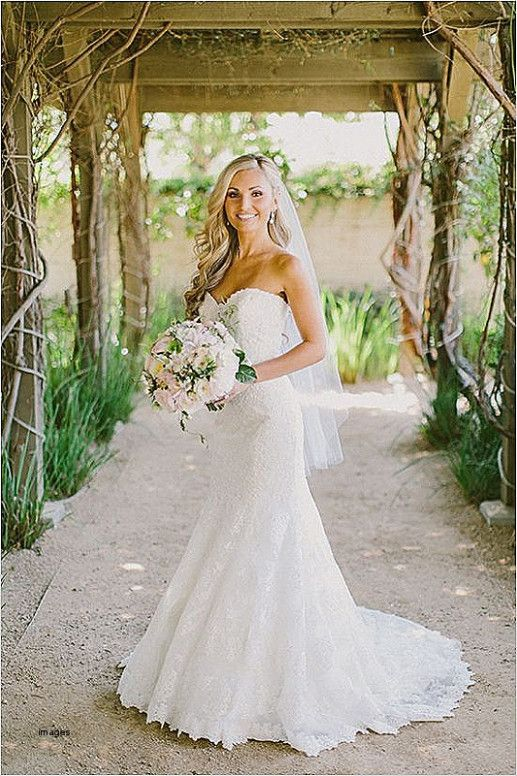 Wedding Hairstyles For Strapless Dress With Veil Country Style