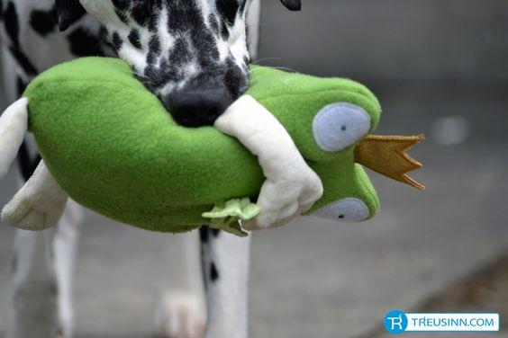 Hundespielzeug Kuscheltier Froschkönig http://www.treusinn.com/hund/hundespielzeug-kuscheltier-froschkoenig #Treusinn
