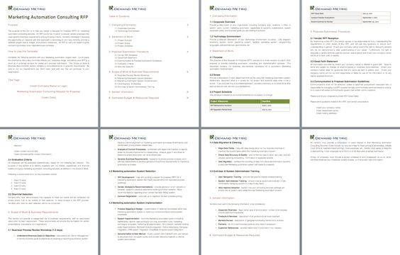 Marketing Automation Consulting Rfp  A Template To Write An Rfp