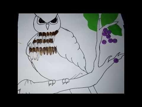 Gambar Kolase Burung Hantu Gambar Burung Hantu Untuk Kolase Gambar Kolase Burung Hantu Gambar Kolase Burung Hantu Dari Biji Bijian G Burung Hantu Kolase Gambar