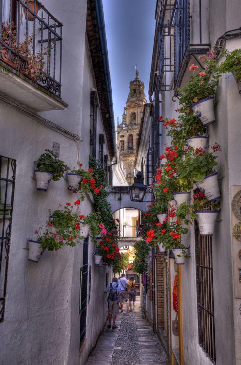Calle de las Flores, Córdoba, Spain