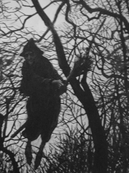 Hedge Riders:  Flying Witch. It was said that the brush of a Witch's besom or broom swept the tracks of her passing from the night sky.