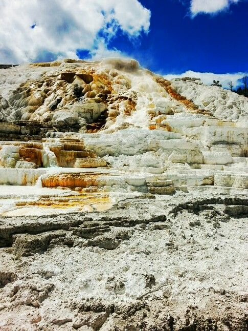 Terraces @ Mammoth Hot Springs-Yellowstone National Park
