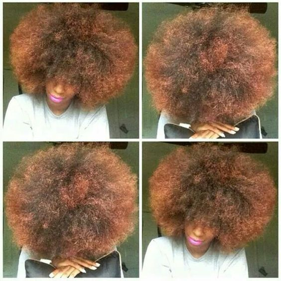 Sometimes the fro wants to take a Selfie too