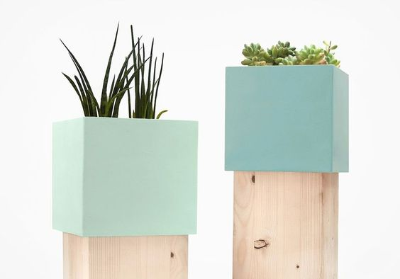 Supporti staminali Pietra-Accasciato: Vaso con pietra