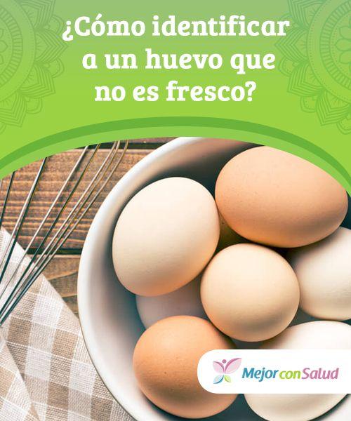 12+ Como saber que los huevos estan frescos ideas in 2021