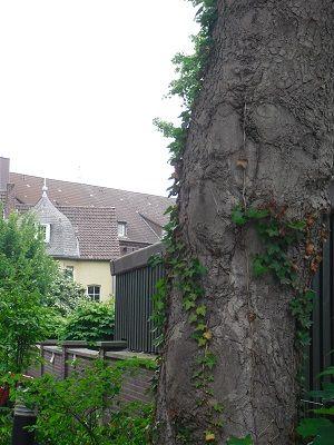 Haus mit Türmchen: vor dem Gefängnis. Hörsterplatz, Münster.