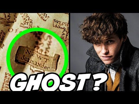Why Newt Scamander Was On The Marauder S Map Easter Egg Harry Potter Theory Youtube Harry Potter Theories Newt Scamander The Marauders