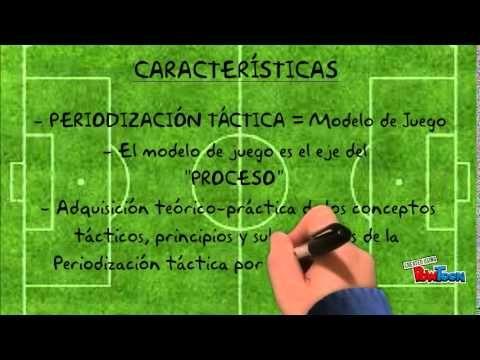 Periodización Táctica Entrenamiento Futbol Periodizacion Entrenamiento