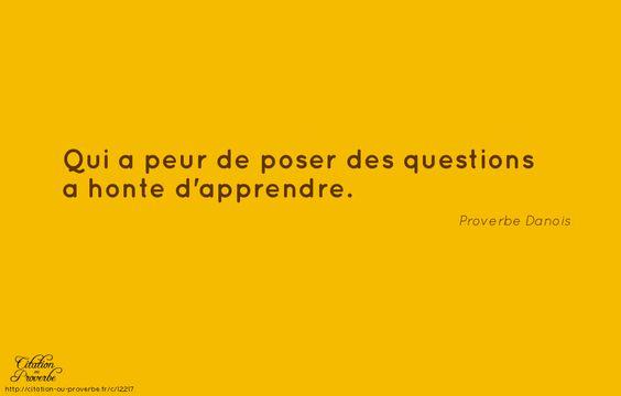 «Qui a peur de poser des questions a honte d'apprendre.» Proverbe Danois