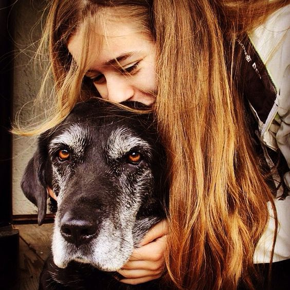 My dog is the best dog. Don't argue. ❤️ She's old and gray, but she's the most adorable old lady on earth! She's my second mom, my sister, my baby and my best friend! ❤️ #cute #dog #cutedog #old #olddog #gray #love #lovemydog #ilovemydog #doglover #animallover #best #bestdogever #adorable #lady #friend #bestfriend #mom #sister #baby #dogsarethebest #dogsareawesome #mansbestfriend