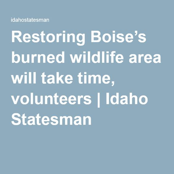 Restoring Boise's burned wildlife area will take time, volunteers | Idaho Statesman