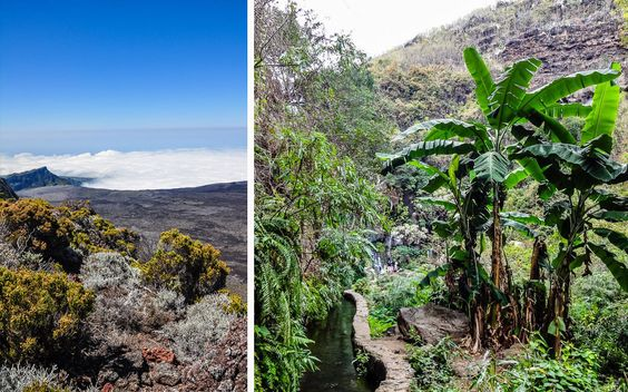 #Tropischer #Dschungel und #Berge im #Inselinneren © Carina Dieringer