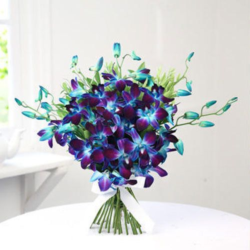 Best Of Beautiful Orchid Flowers Bouquet And Pics In 2020 Orchids Online Blue Orchids Beautiful Orchids