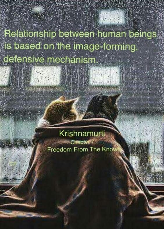 Pin By Prabhakar Chaganti On J K Movie Posters Poster Freedom From The Known