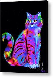 Colorful Fluffy Striped Cat by Nick Gustafson - Colorful Fluffy Striped Cat Painting - Colorful Fluffy Striped Cat Fine Art Prints and Posters for Sale