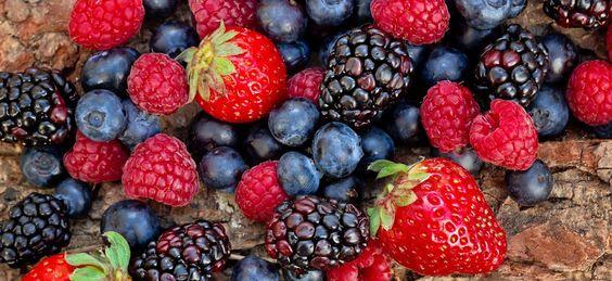 12 alimentos para aumentar a produtividade - Frutos Silvestres - Vê o artigo completo ao clicar na imagem #alimentos #receitas #recipes #saudável #healthy #emprego