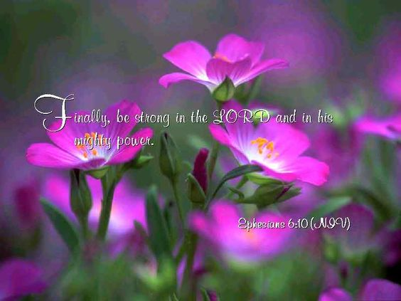 Image result for scripture with flowers