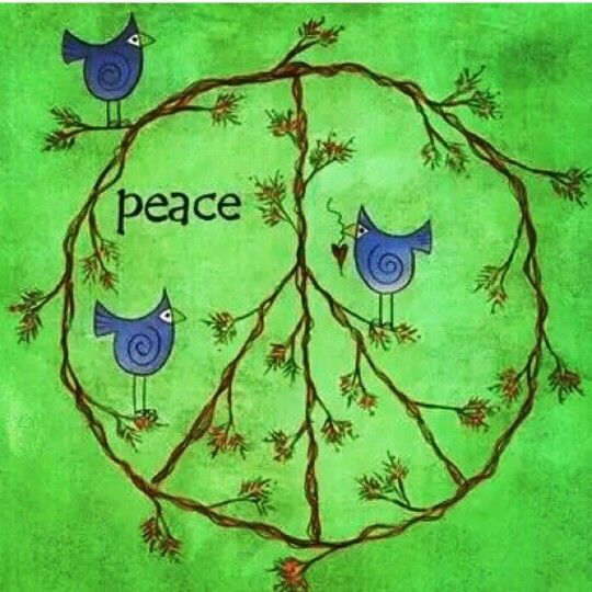 Peace blue birds:
