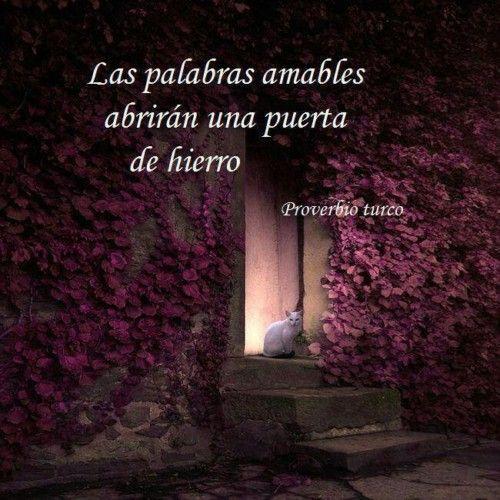 Imágenes Con Frases De Ternura Dulzura Y Amabilidad