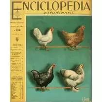 Enciclopedia Estudiantil - Nº 198 - 1964 - Codex