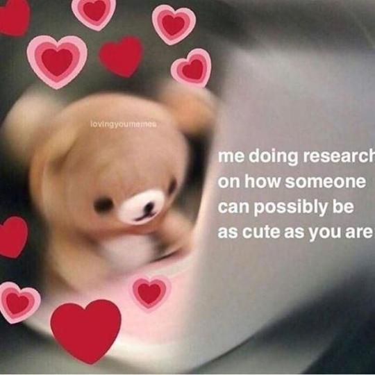 30 Wholesome Memes For Anyone Having A Bad Day Or In Need Of Love Love You Meme Cute Memes Wholesome Memes