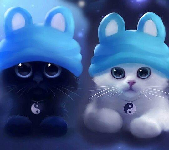 Sehr Suss Yauv Hintergrundbildertiere Katzen Tapeten Bemalte Kreuze Susse Katzen