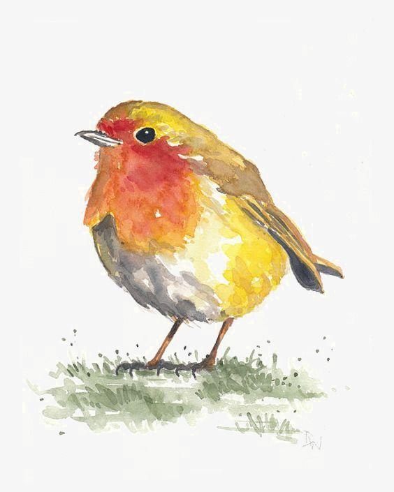 Birds In 2020 Watercolor Bird Cartoon Birds Art