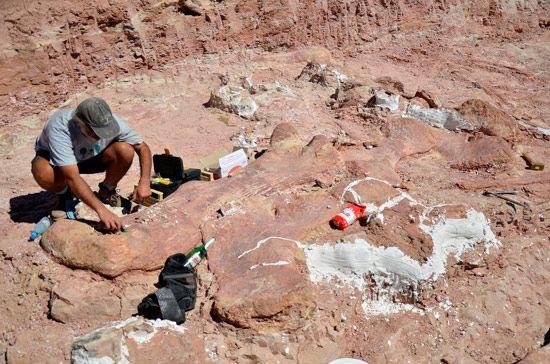 Descubren en Argentina restos del mayor dinosaurio encontrado hasta la fecha en nuestro planeta: http://www.guiarte.com/noticias/megadinosaurio-argentina-descubrimiento14.html