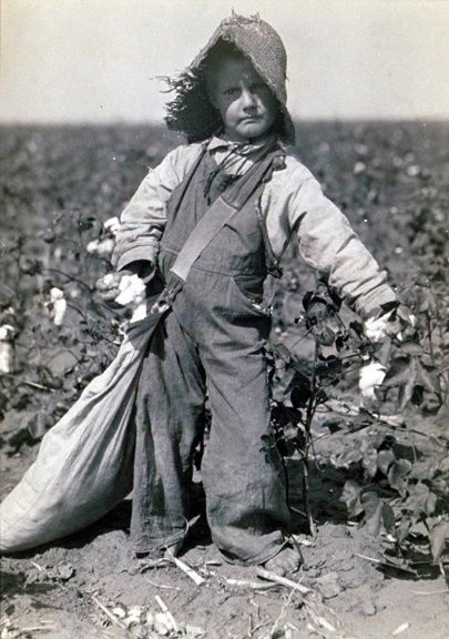 """Lewis W. Hine, """"Young Boy Picking Cotton"""". ca. 1912  This black and white photograph depicts one of the many impacts of the Industrial Revolution; Child Labour."""