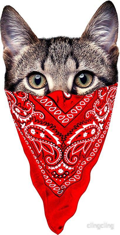 Sticker Gangster Cat Par Clingcling Tatuajes Patitas De Perro Pintura De Gato Imagenes De Gatos