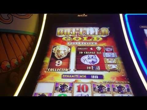 Buffalo gold slot machine wins 2018 olympics